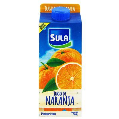 Bebidas-Jugos_7421000844327_1.jpg
