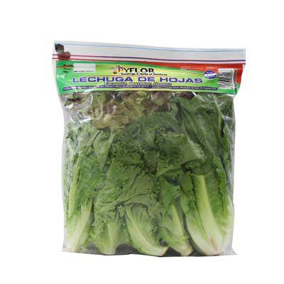 Frutas-y-Verduras-Verduras-Lechuga_7422332600933_1.jpg
